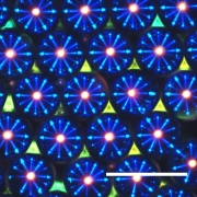 Developing functional materials using microfluidics