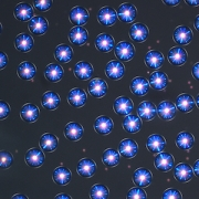 Liquid Crystal Drops